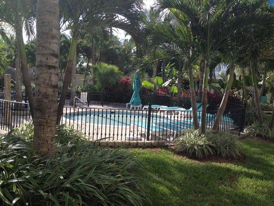 Hotel Riu Plaza Miami Beach : piscine de l'hotel
