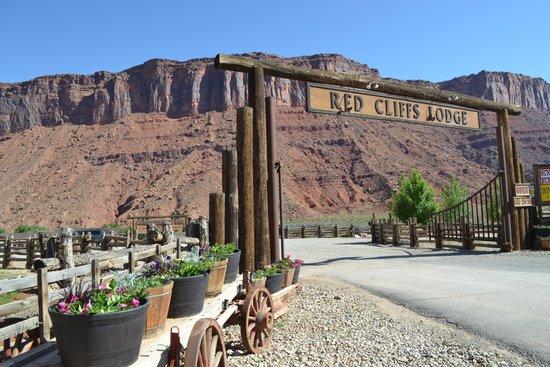 Red Cliffs Lodge : Einfahrt