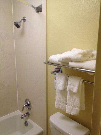 Quality Inn Midtown: Bathroom