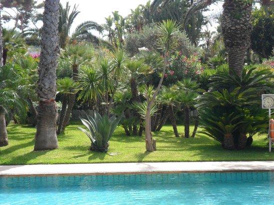 Park Hotel Terme Mediterraneo: Piscina termale e giardino.