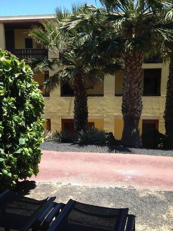 Occidental Jandia Playa : vue de notre chambre