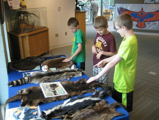 National Eagle Center : animal pelts to feel