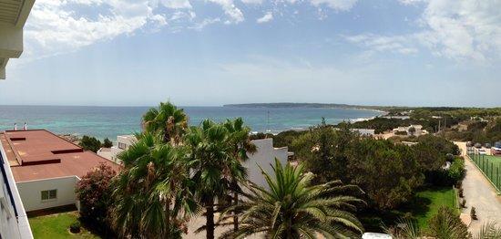 Insotel Hotel Formentera Playa: Blick aus dem Zimmer hinten raus