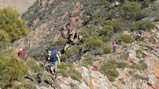 The Larapinta Trail: Ridge from Brinkley Bluff