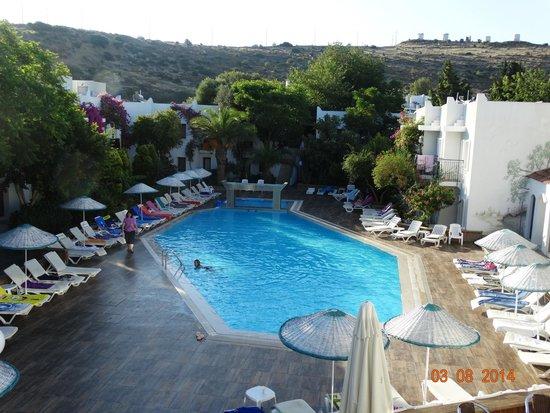 Club Hotel Flora: Vue de la terrasse