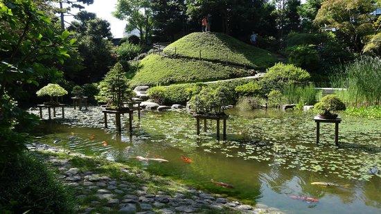 dans le jardin japonais contemporain picture of albert. Black Bedroom Furniture Sets. Home Design Ideas