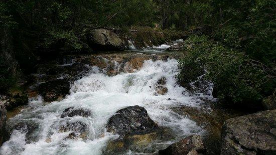 Parque Nacional de Aiguestortes: Aigüestortes