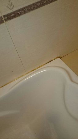 Golden View Hotel Batam: Dirty bsthroom