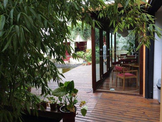 Rock & Wood International Youth Hostel : Garden