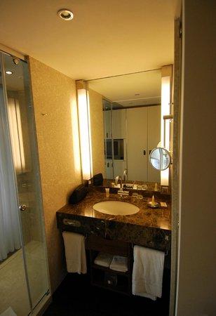 Pullman Dresden Newa: left => shower / right =>toilet