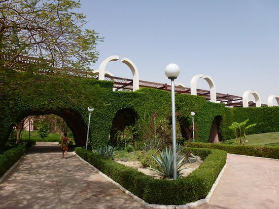 LTI - Pyramisa Isis Island Resort & Spa : Jardins