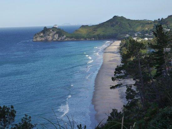 Hahei Beach Walk: Hahei Beach from trail above town