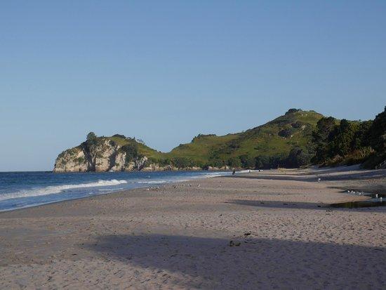 Hahei Beach Walk: Hahei Beach looking east