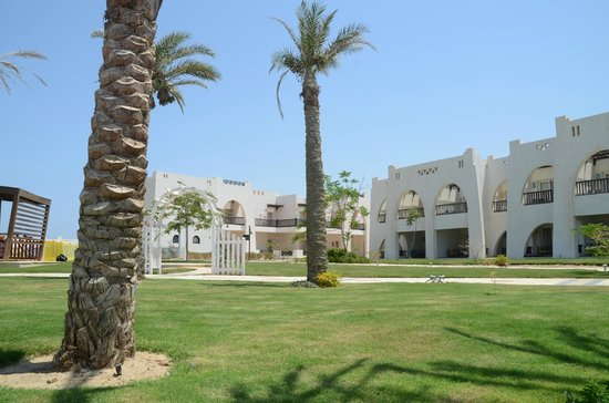 Hilton Marsa Alam Nubian Resort : Rooms as seen from the main pool area