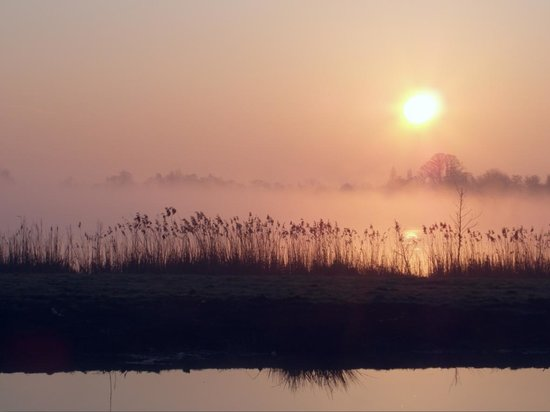Reeuwijkse Plassen: morning sun