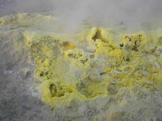 Scalata al Cratere : Fiori di zolfo