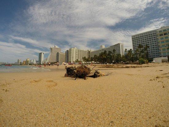 Emporio Acapulco Hotel: Müll am Strand