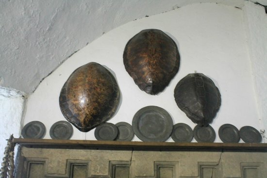 Bunratty Castle: Turtle Shells above Kitchen Fire Place