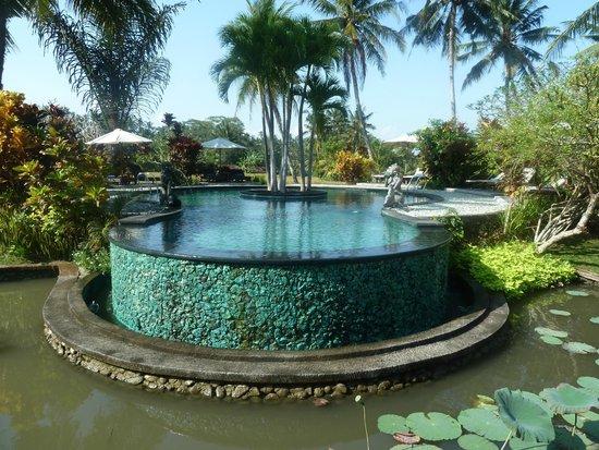 Villa Taman di Blayu: La piscine