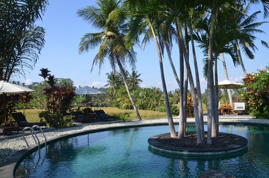 Villa Taman di Blayu: Vue de la piscine et des jardins