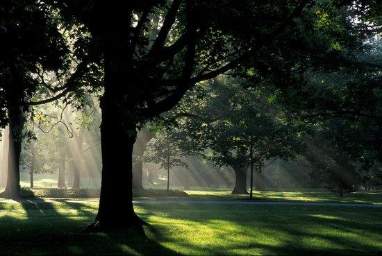 Rideau Hall: The grounds at dawn / Le domaine à l'aube © OSGG-BSGG 2004