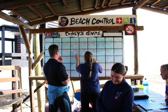 Coral Divers : Dive planning at the beach