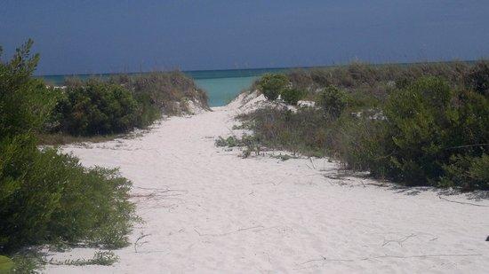 COMO Parrot Cay, Turks and Caicos : il vialetto che porta alla spiaggia