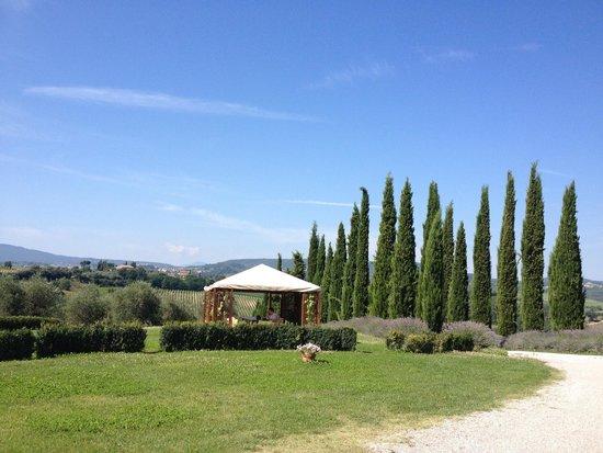Relais Villa Grazianella - Fattoria del Cerro: Giardino