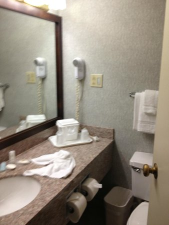 Quality Inn: bathroom