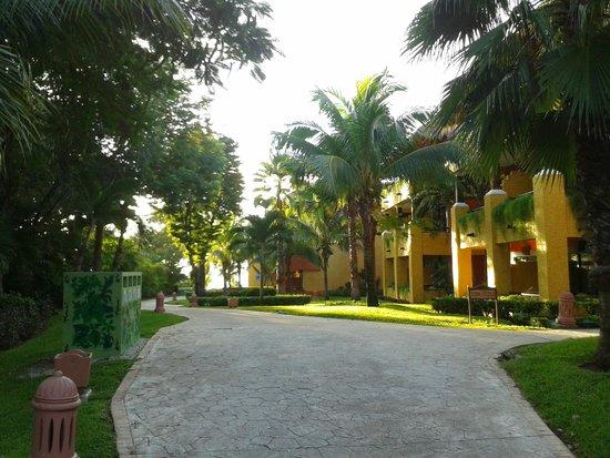 Iberostar Tucan Hotel: Vista de habitaciones
