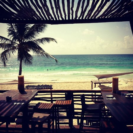 Hip Hotel Tulum: View from the restaurant