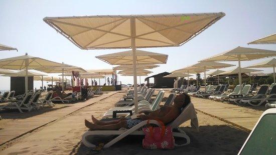 Gloria Golf Resort : Sun beds