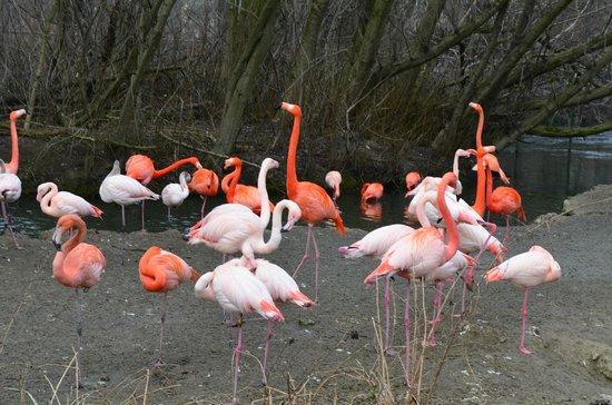 Tierpark Hellabrunn: 2