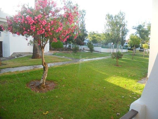 Apartamentos Son Bou Gardens: gardens