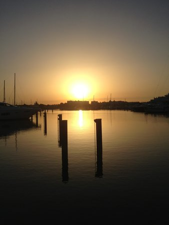 Pestana Vila Sol, Vilamoura: Marina at sundown