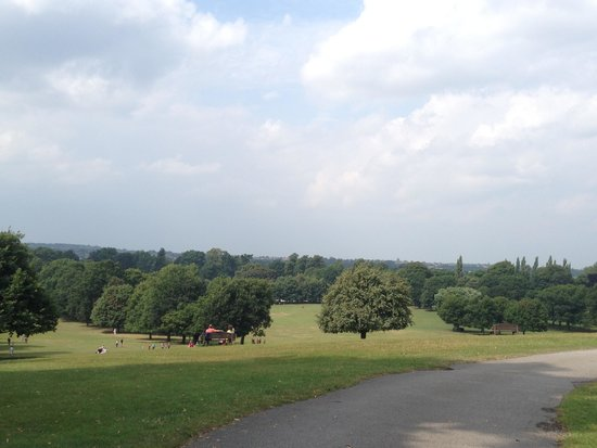 Wollaton Hall and Park: The park