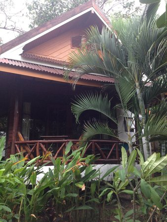 Palm Leaf Resort : Beach bungalow