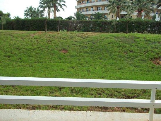 Protur Vista Badia Aparthotel: our view