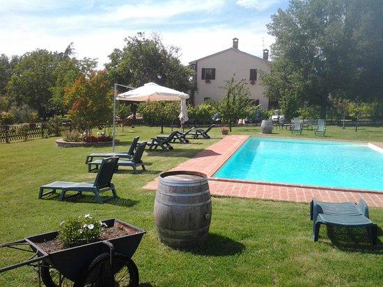 Agriturismo Podere Borgobello : Podere Borgobello piscina