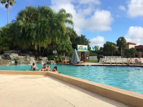 International Palms Resort & Conference Center: Pool and alligator exhibit