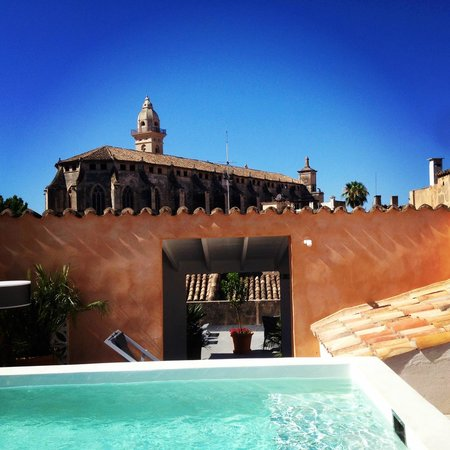 Posada Terra Santa: Roof-top plunge pool with heavenly views