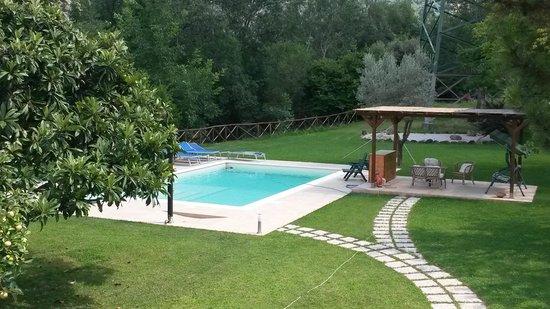 giardino con piscina foto di b b la porta della