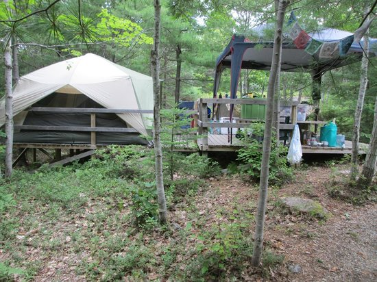 Mount Desert Campground: Campsite