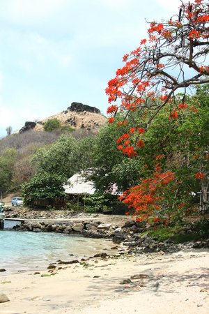 Snuba Saint Lucia: Take a hike to this fort! Great views!