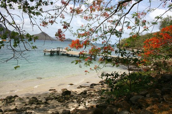Snuba Saint Lucia: The beach where SNUBA takes place. Gorgeous.