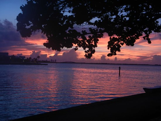 Palmeiras Beach Club at Grove Isle: Sunrise from patio of room