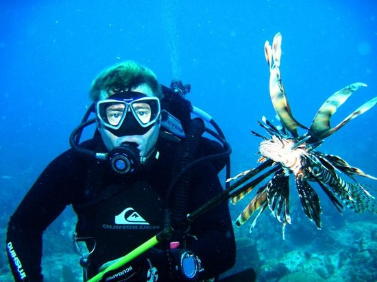 La Perlita: Lion Fish speared