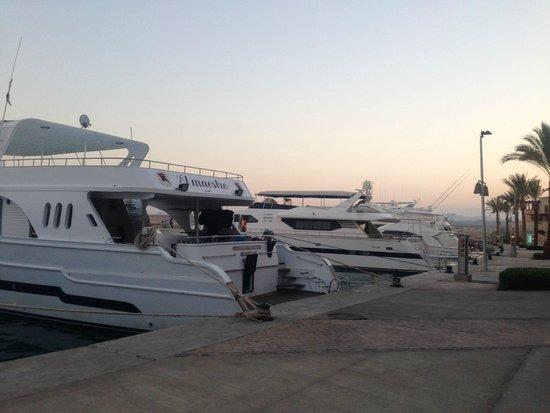 Siva Port Ghalib : la marina
