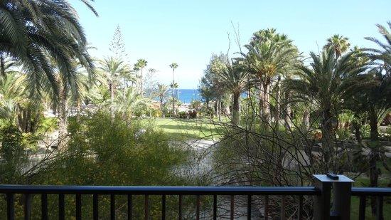 Melia Tamarindos: Vue depuis la terrasse du bar de l'hôtel