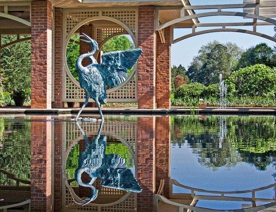 Huntsville Botanical Garden: Water Gardens at Huntsville Botanicl Gardens